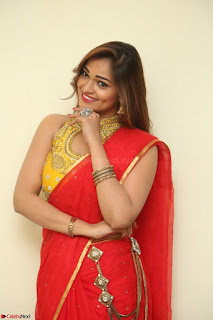 Actress Ashwini in Golden choli Red saree Spicy Pics ~  061.JPG