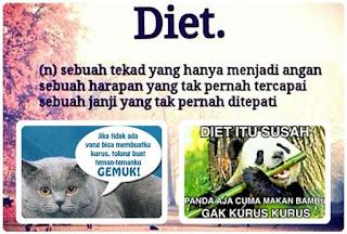 Diet Lucu