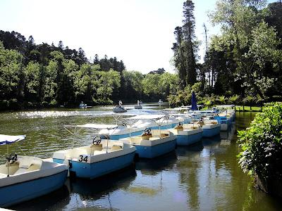 Lago Negro - RS