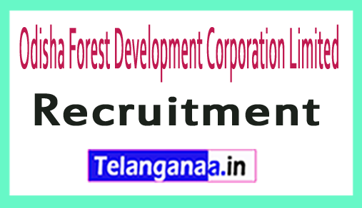 Odisha Forest Development Corporation Limited OFDCL Recruitment