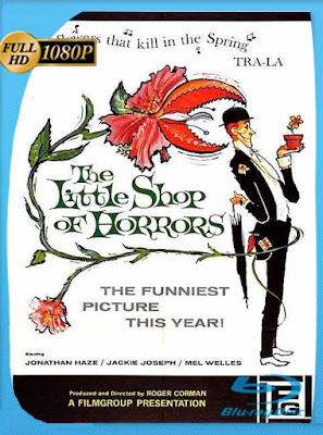La Pequeña Tienda de los Horrores (1960) 1080p Latino (The Little Shop of Horrors)