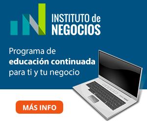 Instituto de Negocios