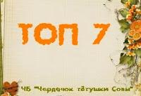баннер ТОП7