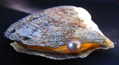 The best advices for travelers to buy pearls on Phu Quoc