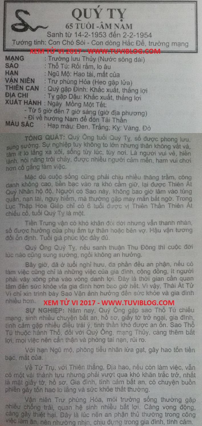 Tu Vi 2017 Quy Ty 1953 nam mang