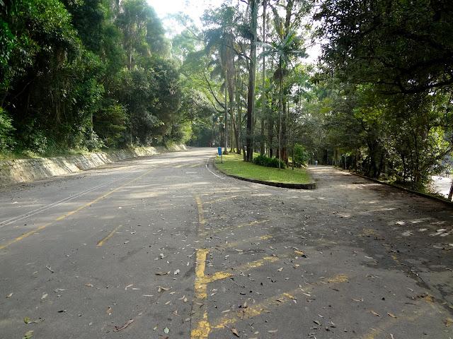 Horto Florestal de São Paulo ou Parque Estadual Albert Löfgren