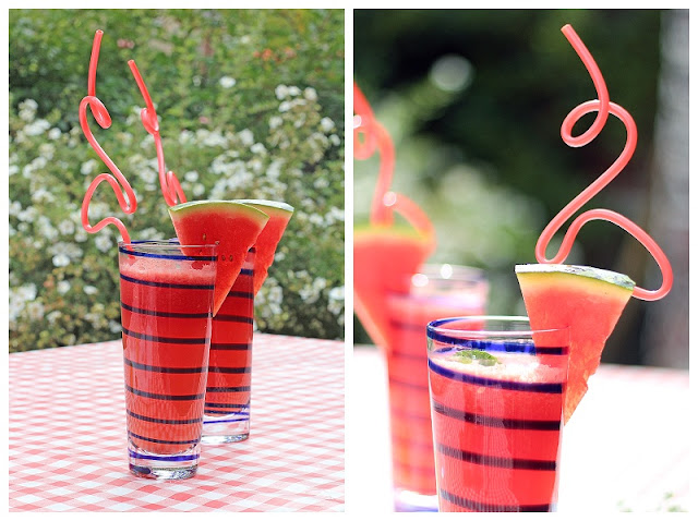 Watermelon Lemonade & Flamingo Straws