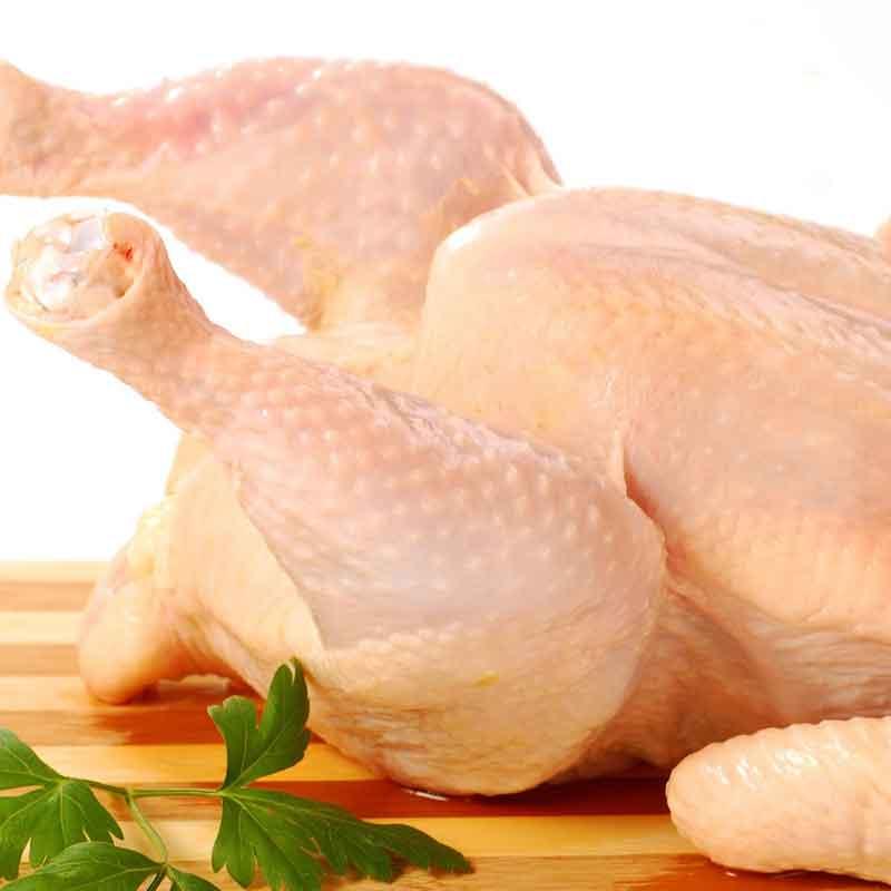 Ayam Dingin Segar