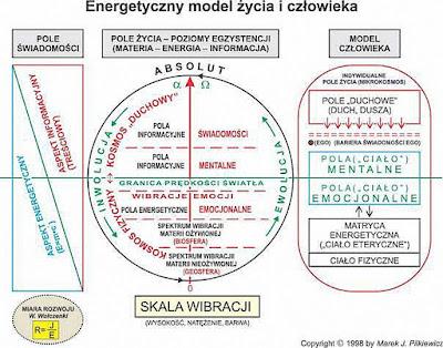 EnergetycznyModelCzlowieka kolor%2B%2528o%2Bzmienionym%2Brozmiarze%2529 - Energetyczny model życia iczłowieka