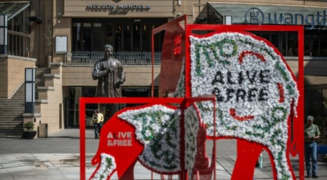 "An installation showing a rhino and an elephant in Mandela Square as part of the CITES (Convention on International Trade in Endangered Species of Wild, Fauna and Flora) convention in Johannesburg on September 26, 2016. By Marco Longari (AFP/File) Johannesburg (AFP) - The world's largest wildlife meeting wrapped up late Tuesday with conservationists hailing progress in tightening rules on trafficking of endangered species including sharks, grey parrots and pangolins.  But the Convention on International Trade in Endangered Species (CITES) conference in Johannesburg also exposed sharp differences over how to best protect Africa's elephants and rhinos.  Ten days of talks ended a day earlier than expected, with CITES chief John Scanlon describing the meeting as ""a game changer for the planet's most vulnerable wild animals and plants"".  More than 2,500 delegates sifted through 62 proposals to reform trade restrictions on more than 400 species. In all, 51 proposals were accepted, five rejected and six were withdrawn.  Wildlife campaigners generally welcomed the outcome, adding that concrete action was now needed to tackle a global boom in poaching and trafficking.  The World Wildlife Fund (WWF) said that governments had united behind ""tough decisions"", while the International Fund for Animal Welfare (IFAW) said that ""conservation trumped commerce"".  Among the animals affected by CITES decisions were:  African grey parrots  Governments overwhelmingly voted to outlaw all trade of the much sought-after African grey parrot.  The birds are prized as pets because of their intelligence and ability to mimic human speech. Their numbers have been hit by poaching as well as destruction of forest habitats.  The birds are now rarely sighted or locally extinct in countries including Benin, Burundi, Kenya, Rwanda, Tanzania and Togo.  African elephants  A high-profile bid by 29 African countries to have all African elephants included in the highest category of CITES protection was rejected after heated debate."