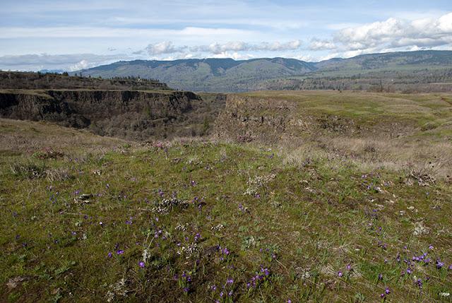 Rowena Plateau