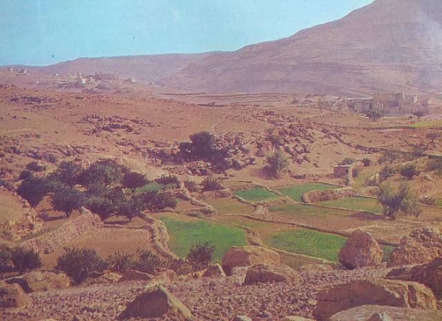 Foto Pemandangan kota bersejarah San'a