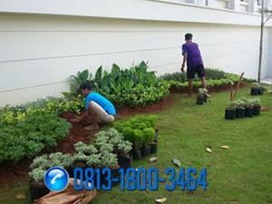Tukang Taman Murah dan Profesional di Bsd,Jasa Renovasi Taman di Bsd,Jasa Pembuatan Taman di Bsd
