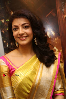 Actress Kajal Agarwal Stills in Golden Silk Saree at Trisha Sesigner Store Launch  0006.jpg