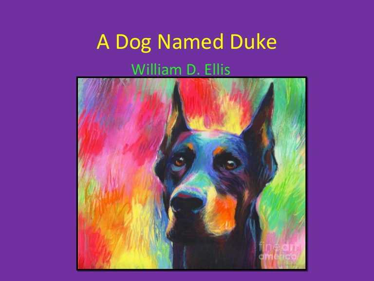 a dog named duke Duke was truly an extraordinary dog as he understood the needs of his master completely and pushed him out of his depressed state he understood that his master was not well and toned down his behaviour from his earlier boisterous self.