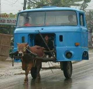 automovil inusual jalado por un buey