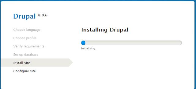Drupal on local server
