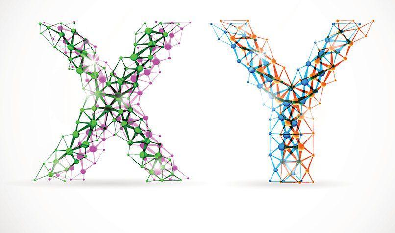 نظرية  X و Y فى الإدارة