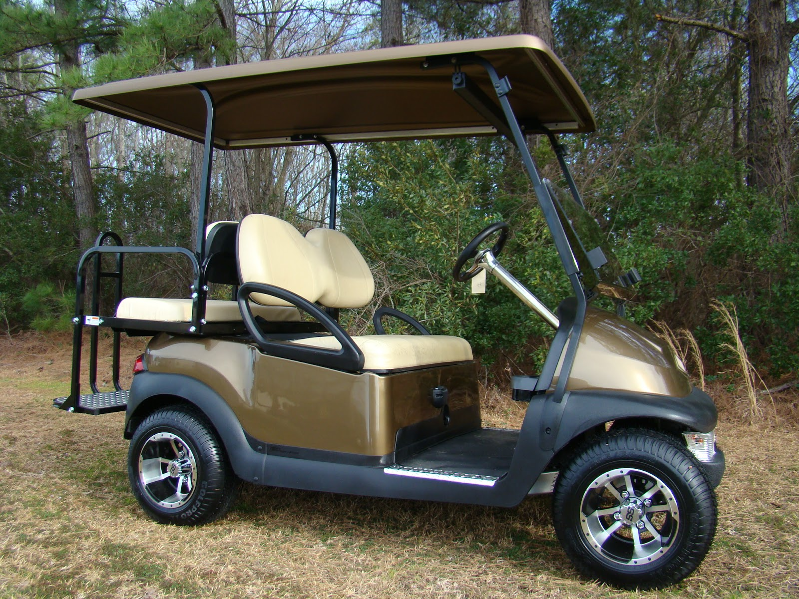 King of carts new used electric gas golf carts for - Golf cart rentals garden city sc ...