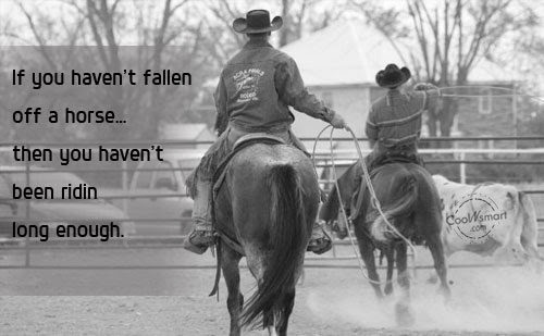 Inspriational Quotes Wallpaper For Mac Horse Quotes Amp Cowgirl Quotes Horse Quotes Picture Gallery