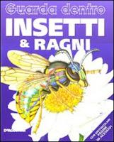 libri per bambini su ragni e insetti