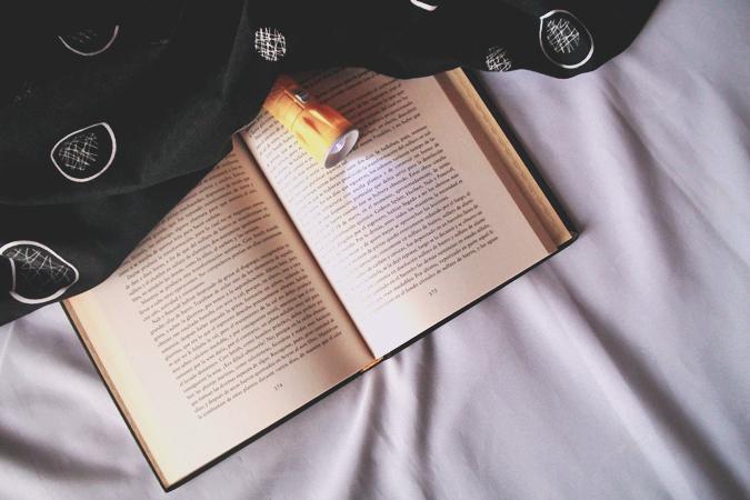 ficcion+literaria+vs+ficcion+de+genero