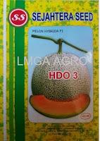 melon daging orange,melon f1 hdo 3,benih melon f1 hdo 3,lmga agro,sejahtera seed