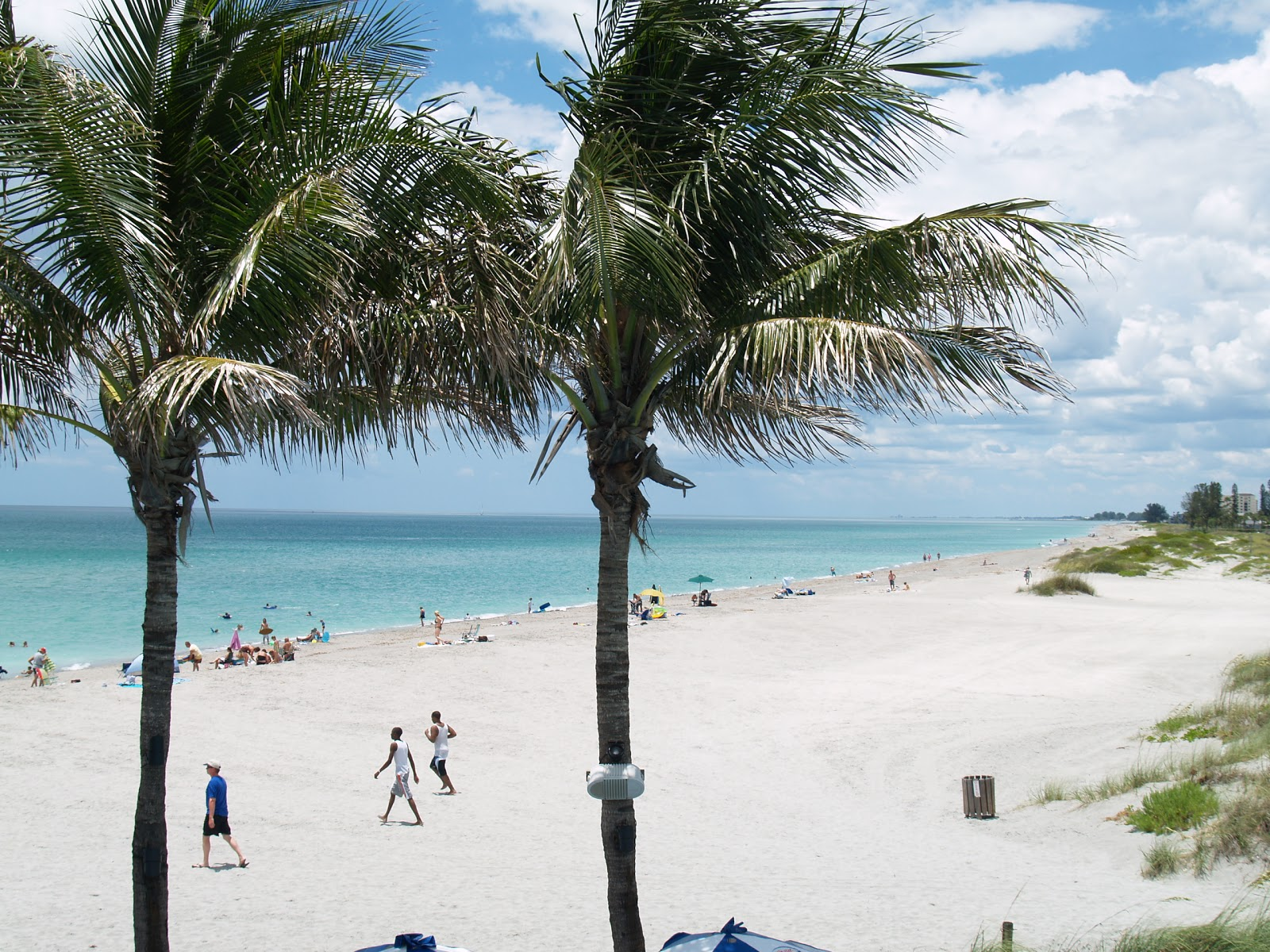 Venice Jetties (south) Beach Weather And Live Cam