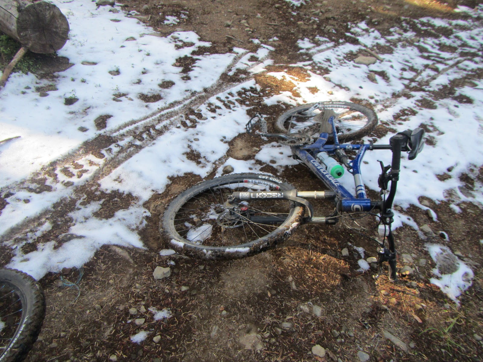 Brian's Bike Buzz: Bussard Mountain Trail