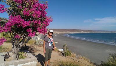Liz Overlooking Scorpion Bay