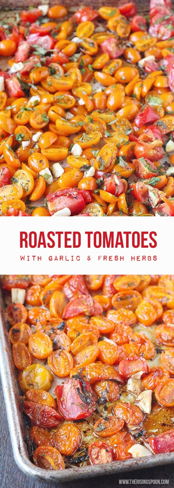 Fresh tomatoes roasted with herbs, garlic, olive oil, balsamic vinegar ...
