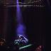 Festa Galgo IV no Musicbox: animais em palco