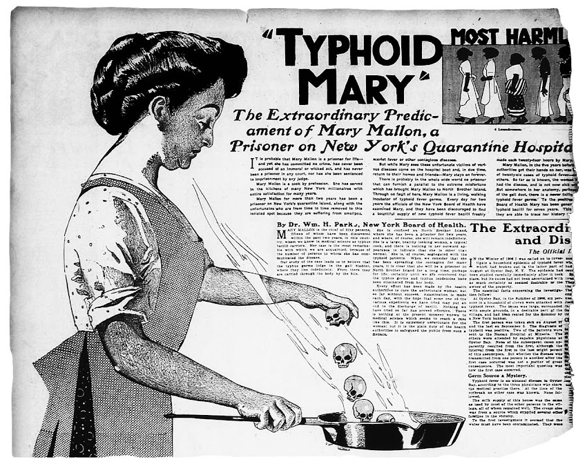 Lo Sapevi Che Mary Mallon, nota anche come Typhoid Mary