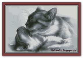 Кошки в серых тонах