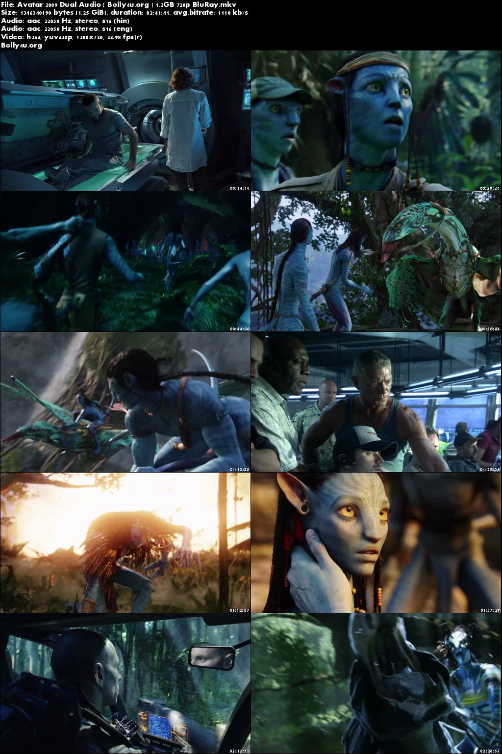 Avatar 2009 BluRay 500MB Hindi English Dual Audio 480p Download