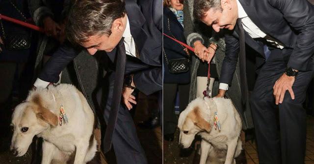 Ο Μητσοτάκης έσκυψε να χαϊδέψει σκύλο και το ζώο γύρισε από την άλλη