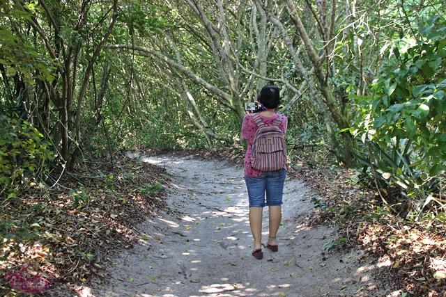 Passeios com natureza no Rio de Janeiro