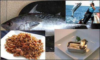 Ikan laut yang banyak dikonsumsi