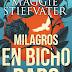 Libro: Milagros en Bicho Raro