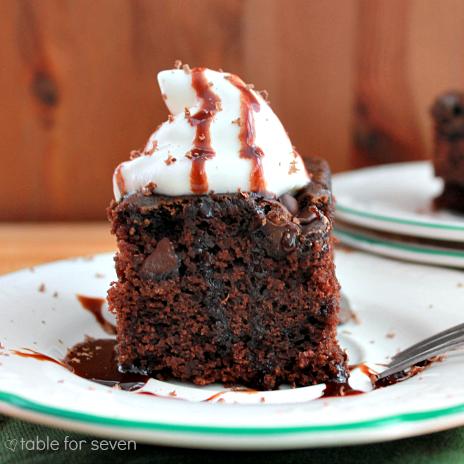 Double Chocolate Snack Cake