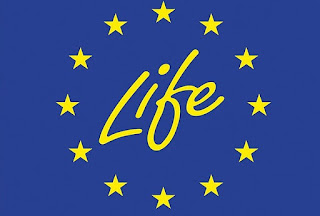https://www.ecologique-solidaire.gouv.fr/programme-europeen-financement-life