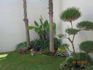 TAMAN MINIMALIS | www.tamanasrisurabaya.com