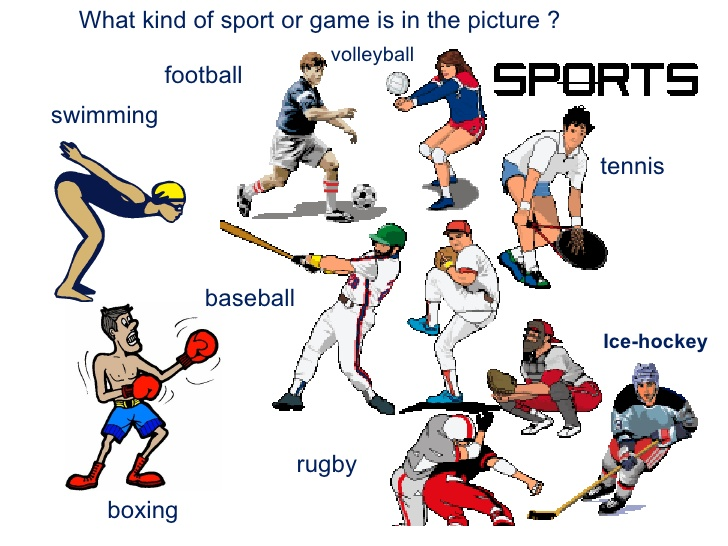 The Importance of Sports and Physical Education