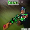 Play Batter Challenge Cricket Game