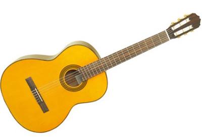 dan guitar takamine d30