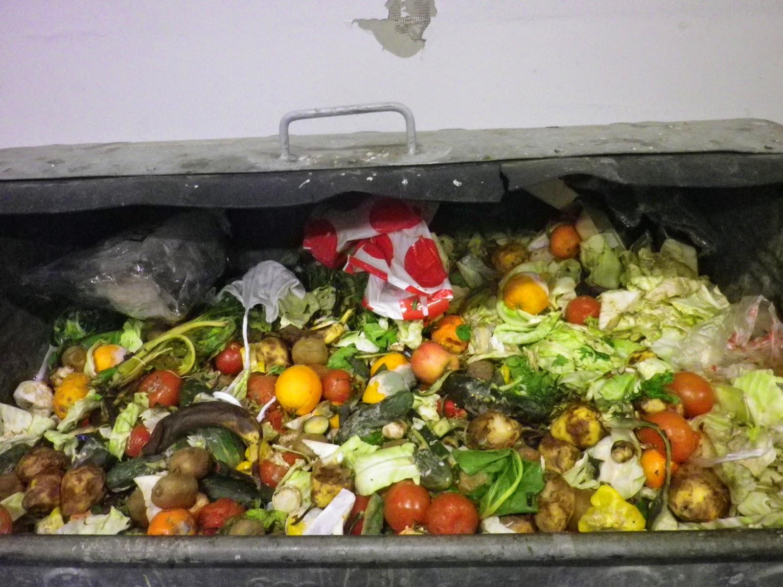{空屋筆記} 免費的自由: Dumpster Diving:你敢吃垃圾嗎?
