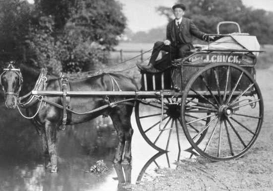 Photograph of Chuck the bakers delivery trap 1900s Image from the former North Mymms Local History Society
