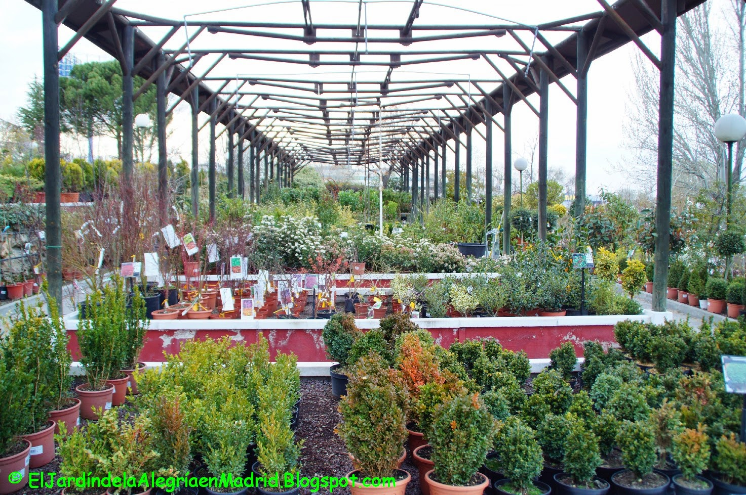 El jard n de la alegr a los pe otes un gran centro de - Viveros plantas madrid ...