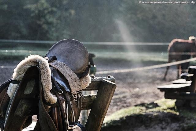 Sattel, Pferdesattel, Reiten