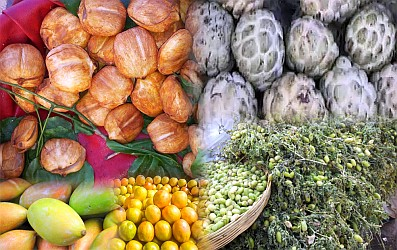 deccan-fruits